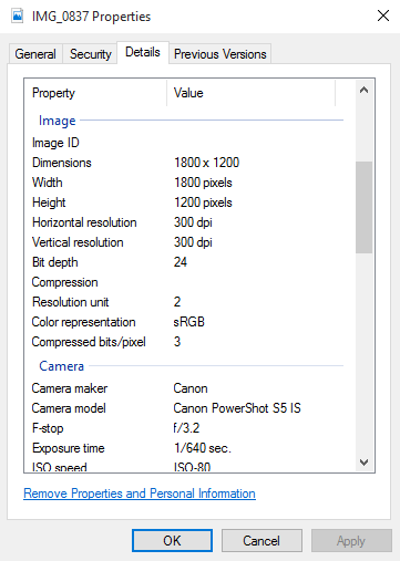 EXIF data of photo