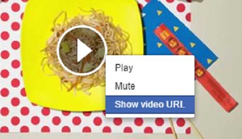 video url of Facebook