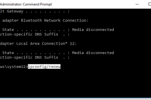 ipconfig/renew command to get new IP address windows